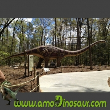 Animatronic mamenchisaurus features with high simulation dinosaur